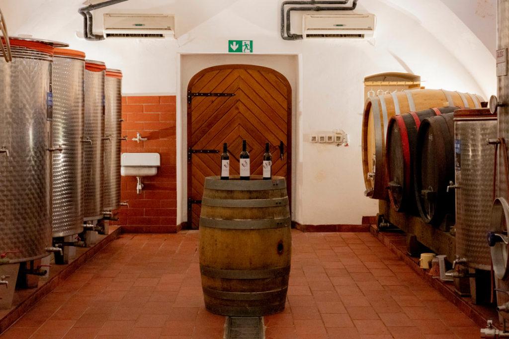 vinogradnik gorjup