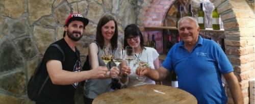 Wine tasting in wine museum Haloze